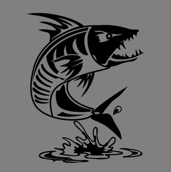 tigerfish software