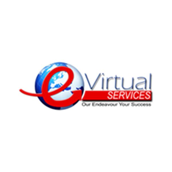 e virtual services