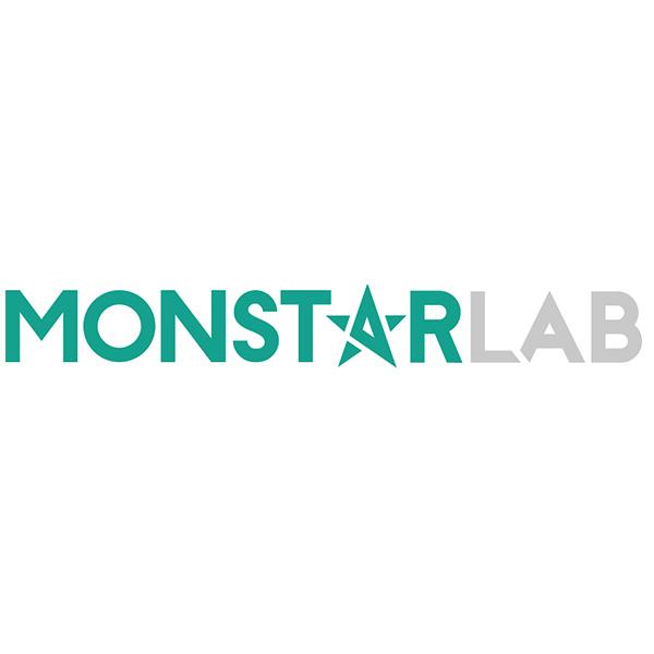monstar lab inc